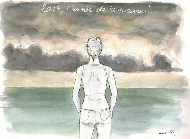 2015, niaque - 645